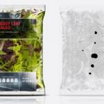 Salad Bag_MDX